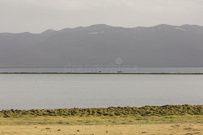 Song Kul lake in Kyrgyzstan in the magic evening light. Central asia royalty free stock photo