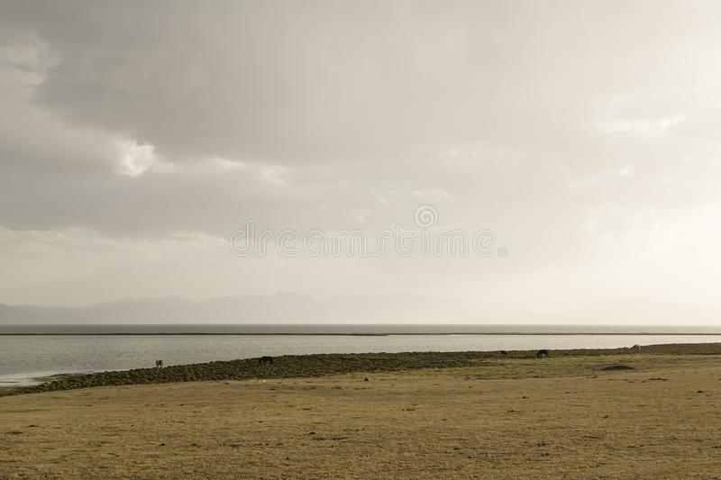 Song Kul lake in Kyrgyzstan in the magic evening light. Central asia royalty free stock image