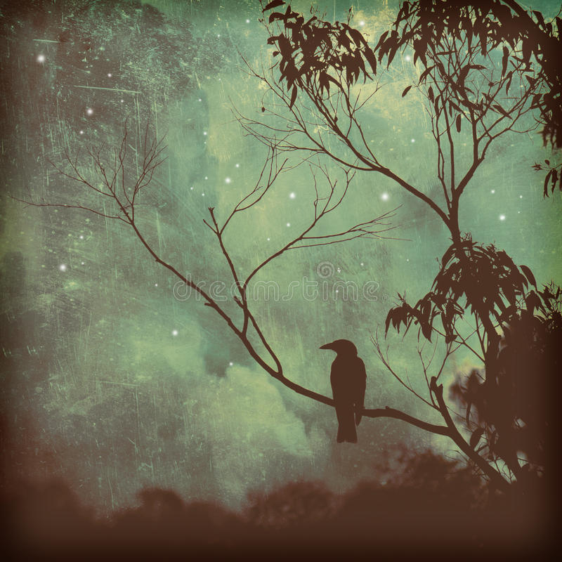 Songbird silhouette against moody evening sky. Moody silhouette of a black songbird perched in a tree against a starlit evening sky. Grunge textured photo vector illustration
