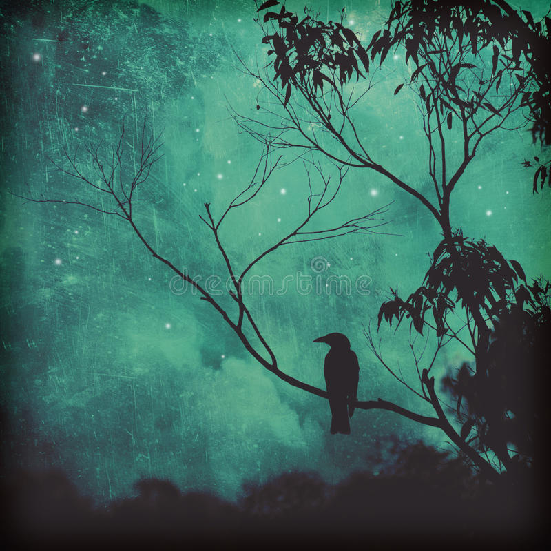 Songbird silhouette against moody evening sky. Moody silhouette of a black songbird perched in a tree against a starlit evening sky. Grunge textured photo royalty free illustration