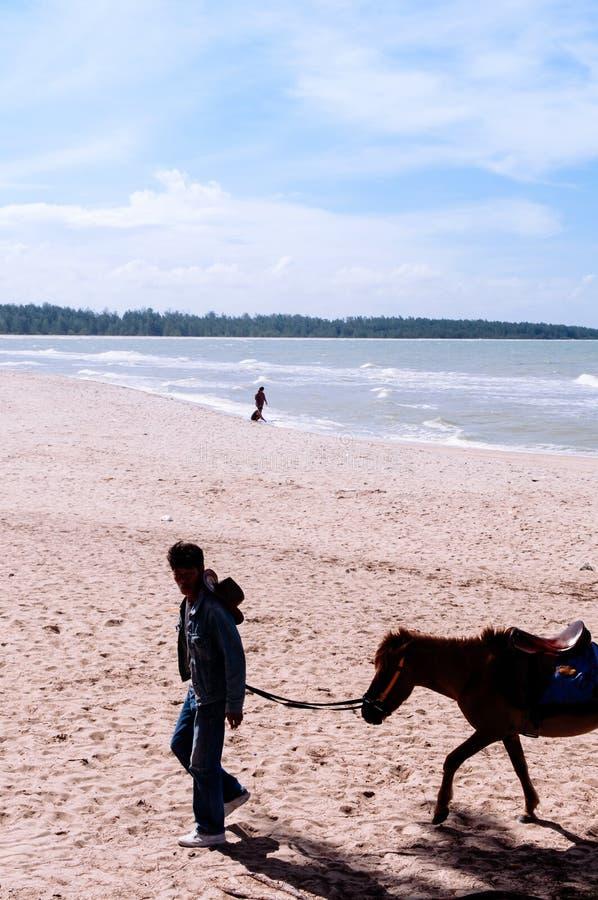 Songkhla, Tailândia - imagem da silhueta do cavalo do pônei e do seu proprietário que andam na praia famosa de Samila na temporad fotografia de stock