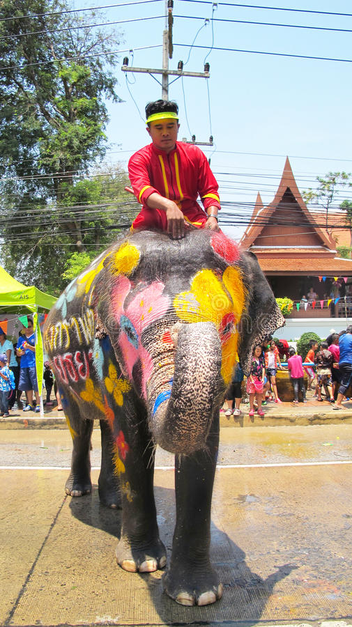 Songkran Festival is celebrated with elephants in Ayutthaya. The Songkran festival (Thai: สงกรานต์) is celebrated in royalty free stock images