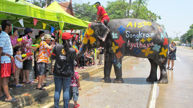 Songkran Festival is celebrated with elephants in Ayutthaya. The Songkran festival (Thai: สงกรานต์) is celebrated in stock images
