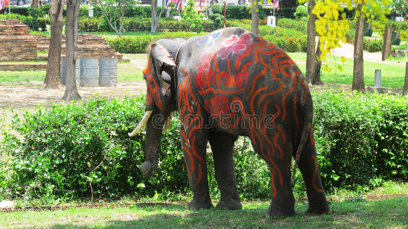 Songkran Festival is celebrated with elephants in Ayutthaya. The Songkran festival (Thai: สงกรานต์) is celebrated in stock photos
