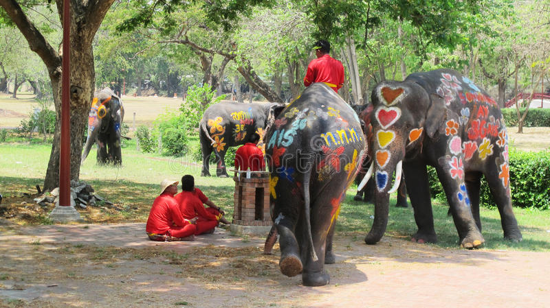 Songkran Festival is celebrated with elephants in Ayutthaya. The Songkran festival (Thai: สงกรานต์) is celebrated in stock photography
