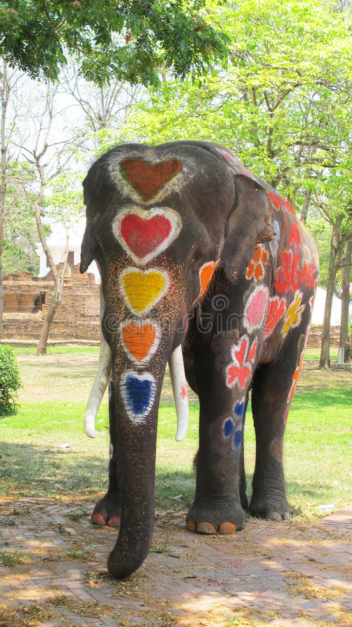 Songkran Festival is celebrated with elephants in Ayutthaya. The Songkran festival (Thai royalty free stock photos