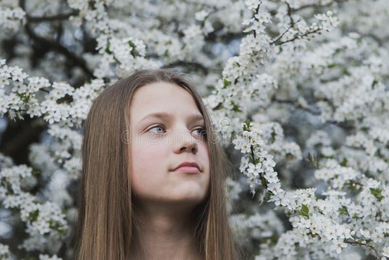 Sonhar acordado na primavera fotos de stock royalty free