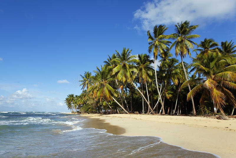 Sonho da praia foto de stock royalty free