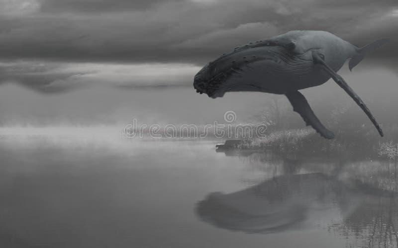 Sonho grande de voo do azul da baleia fotografia de stock