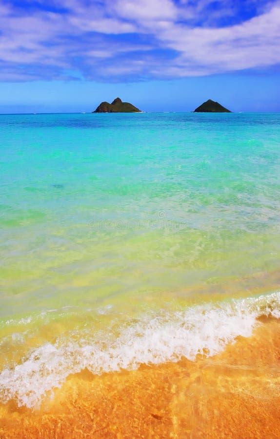 Sonhos da praia imagens de stock