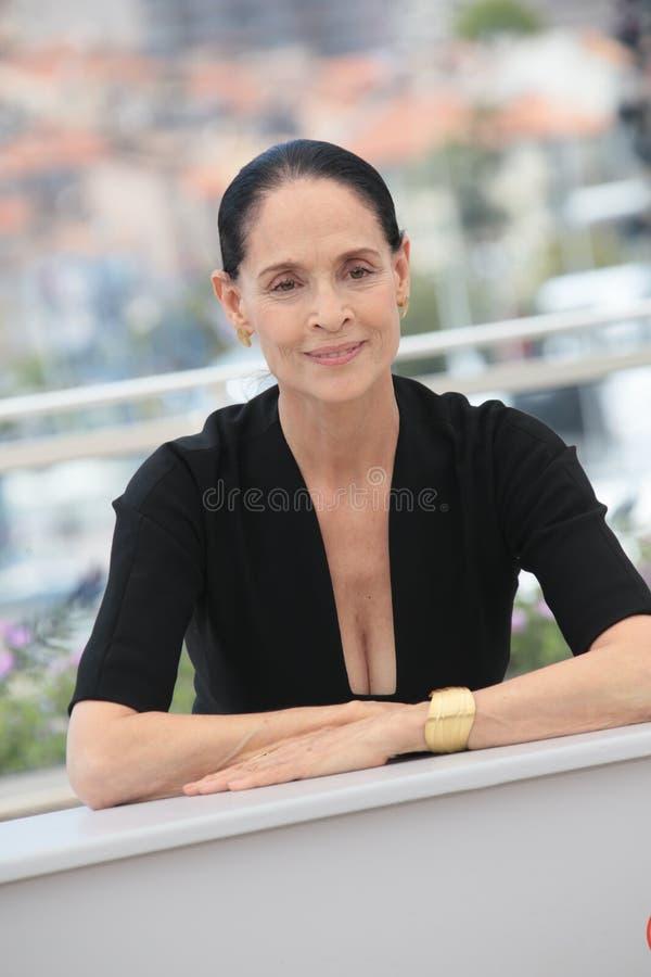 Sonia Braga immagine stock libera da diritti
