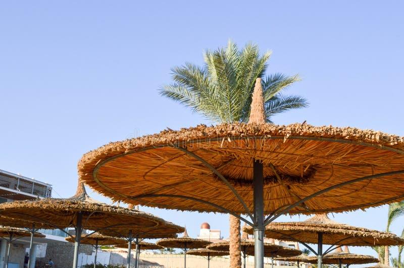 Sonnen-schützende Sommerregenschirme des gelben Strandes hergestellt vom Heu, Stroh-förmige Hüte auf den Palmen lizenzfreies stockbild