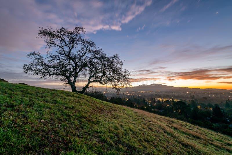 Sonnenaufgang über Berg Diablo und der Ostbucht lizenzfreie stockbilder
