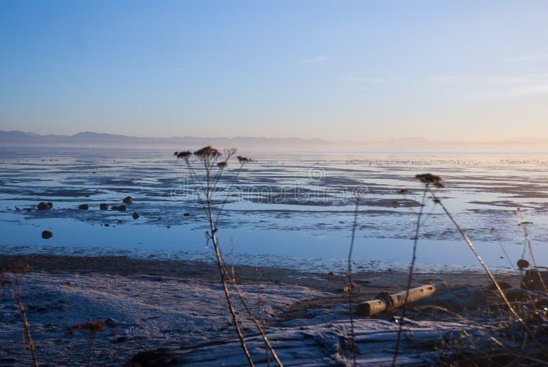 Sonnenaufgang über dem Delta stockbilder
