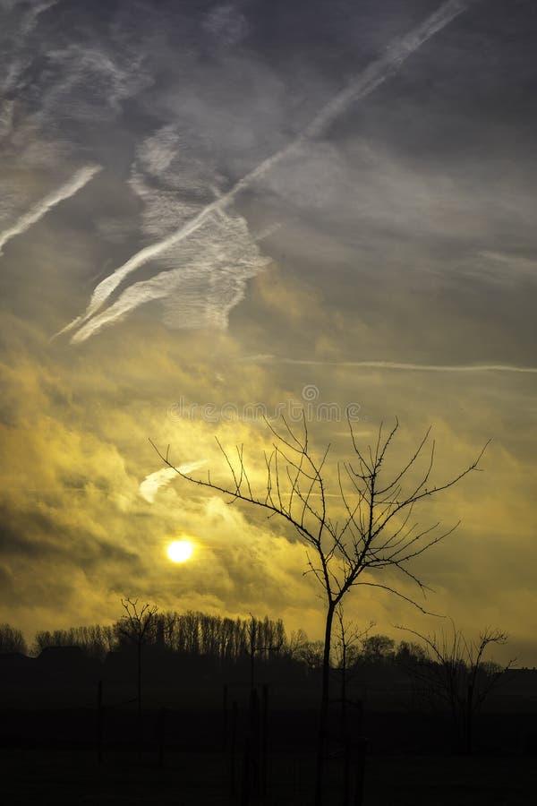 Sonnenaufgang über dem Polder in Belgien stockbilder