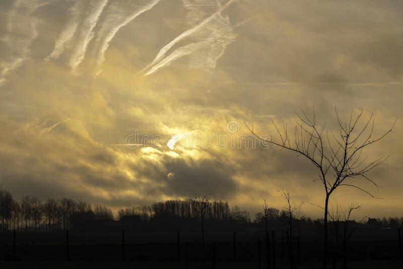 Sonnenaufgang über dem Polder in Belgien stockfotos