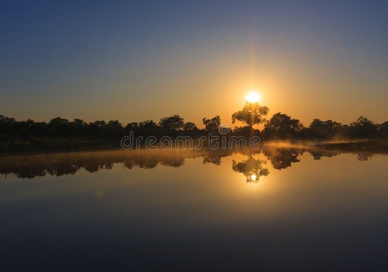 Sonnenaufgang über dem Wasser im Okavango-Delta stockbild