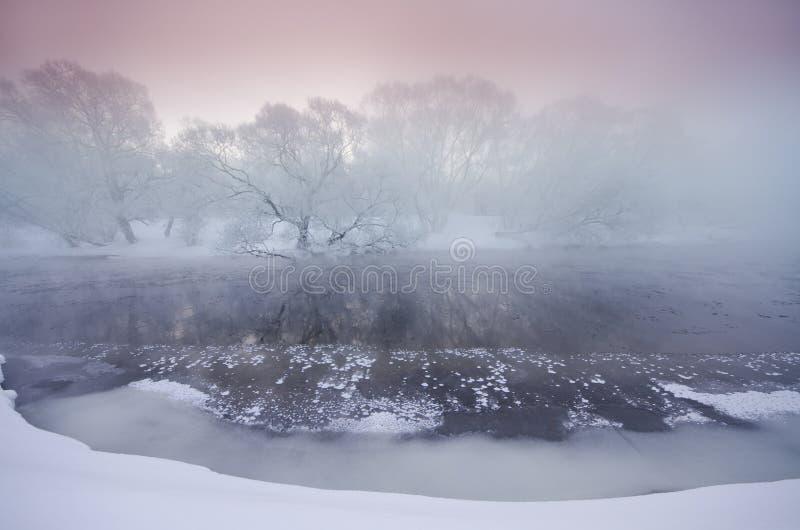 Sonnenaufgang über den Bäumen bedeckt mit Hoar nahe einem Fluss lizenzfreie stockfotografie