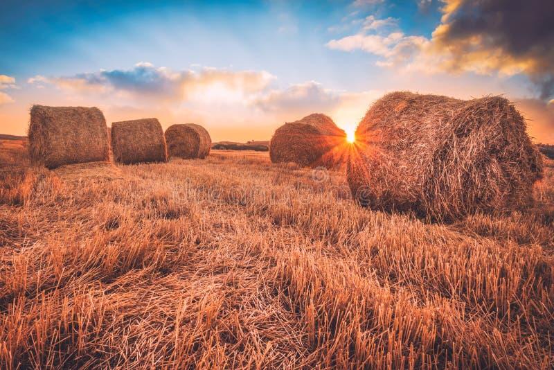 Sonnenaufgang über einem Feld von Heuballen stockfoto