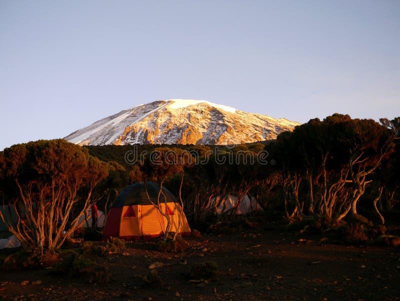Sonnenaufgang über Kilimanjaro lizenzfreies stockbild