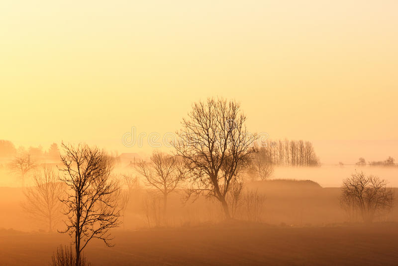 Sonnenaufgang über Landschaftslandschaft stockbild