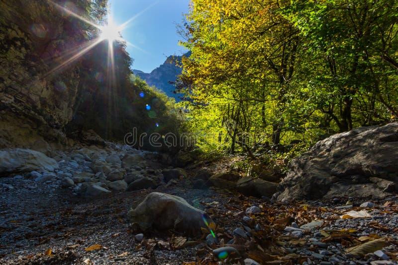 Sonnenaufgang über Vikos-Schlucht im Herbst, Felsen, Bäume, blauer Himmel lizenzfreie stockbilder