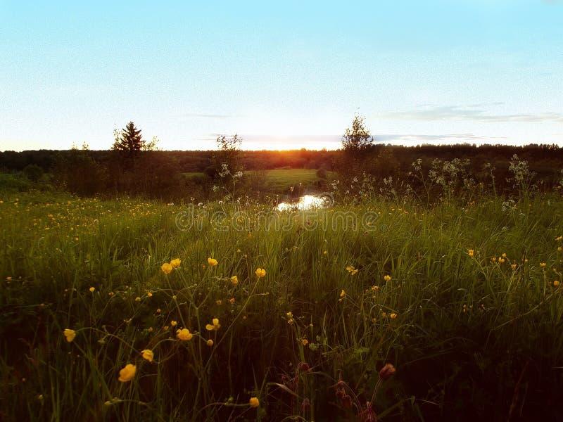 Sonnenaufgang auf Boden stockfotos