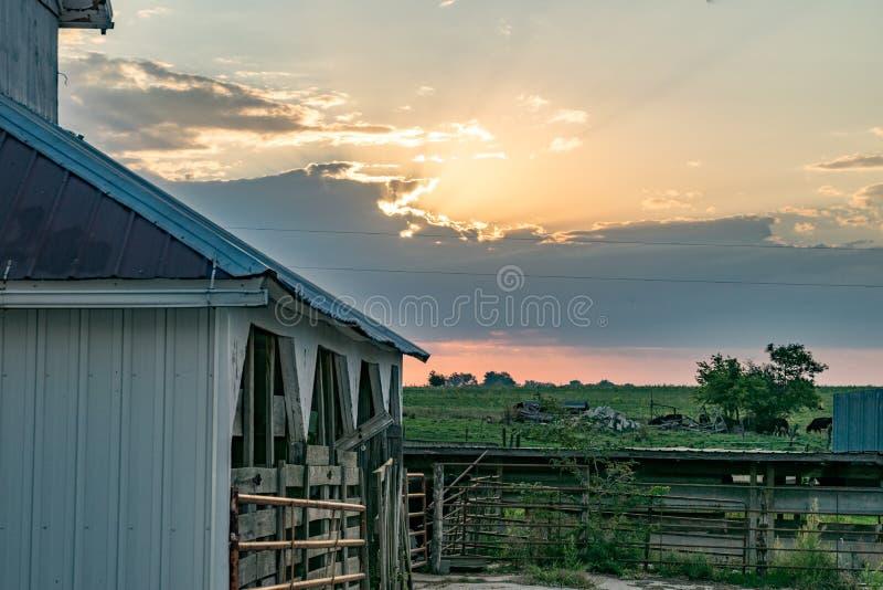 Sonnenaufgang auf dem Bauernhof stockbilder