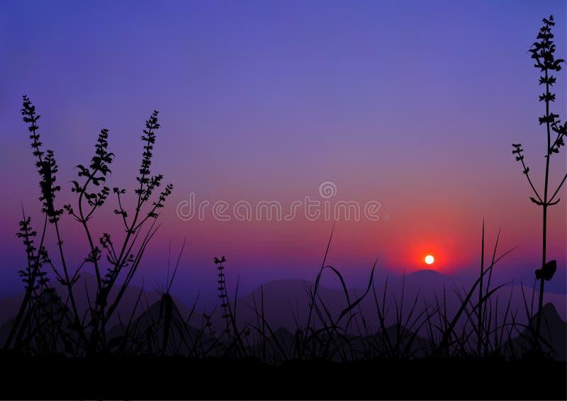 Sonnenaufgang - Berge und Gras-Schattenbilder stock abbildung