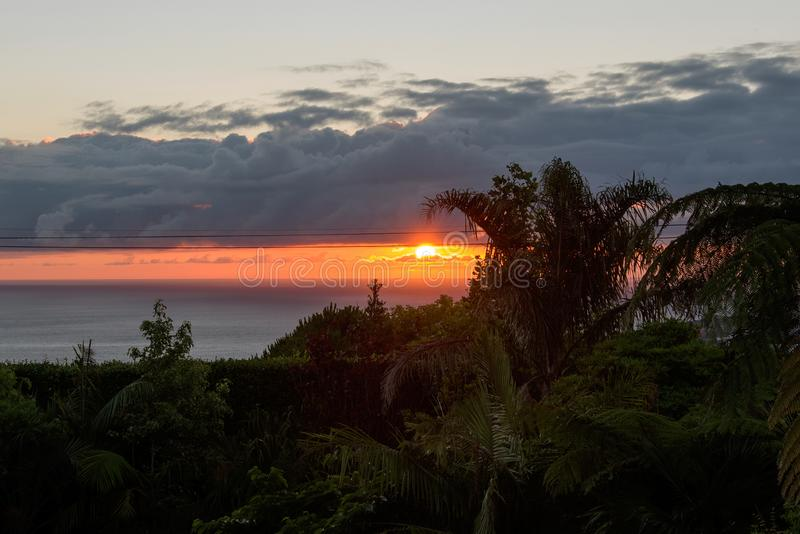 Sonnenaufgang in Capelas, Sao Miguel, Azoren stockfoto