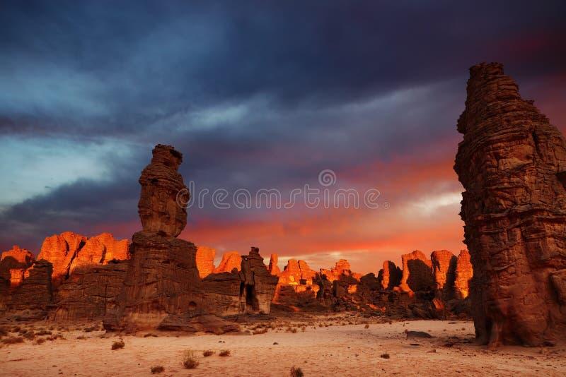 Sonnenaufgang in der Sahara-Wüste stockfotografie