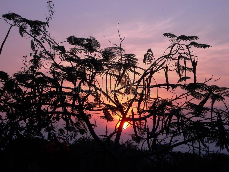 Sonnenaufgang in Diu/in Indien lizenzfreie stockfotografie