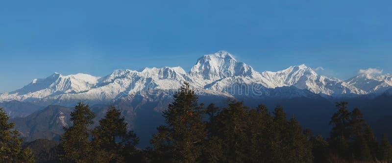 Sonnenaufgang in Himalaja lizenzfreie stockbilder