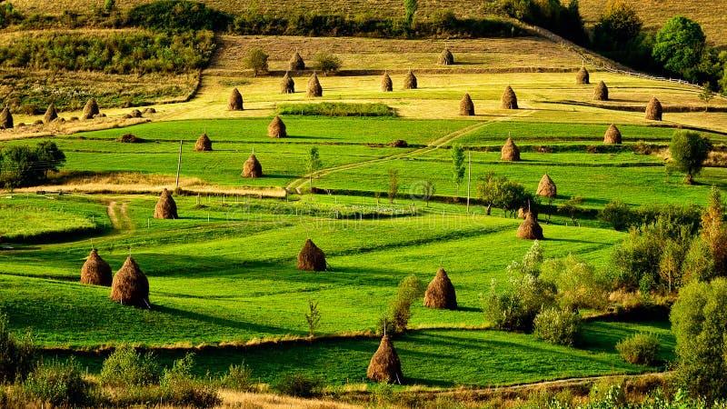 Sonnenaufgang im Transylvania County Rumänien mit Feldern des Heuschobers lizenzfreie stockbilder