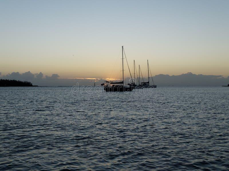 Sonnenaufgang-Meerblick mit Yachten am Anker australien stockfotografie