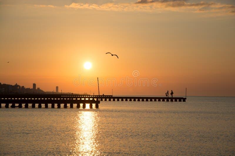 Sonnenaufgang mit Liebhabern und Seemöwe stockfoto