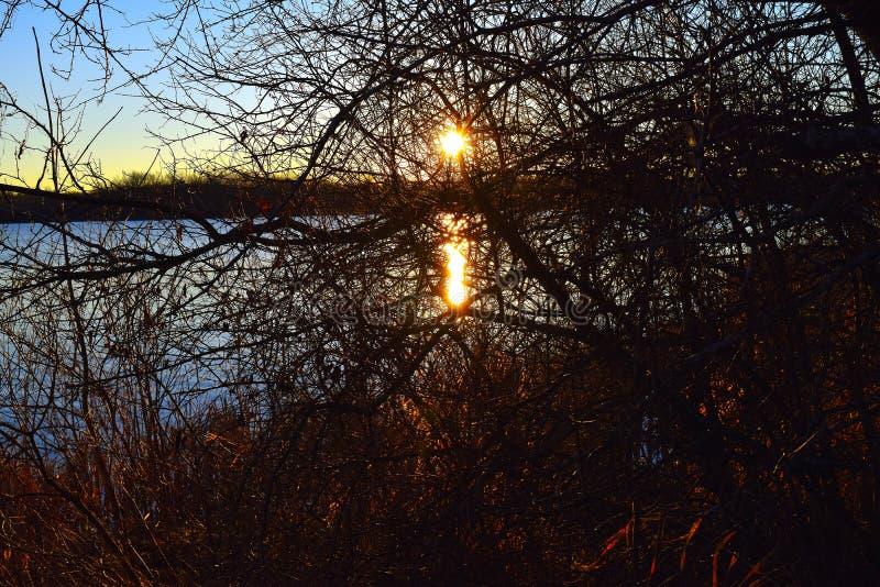 Sonnenaufgang am See Ovid stockbilder