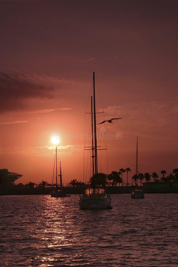 Sonnenaufgang-Segelboot stockfotos