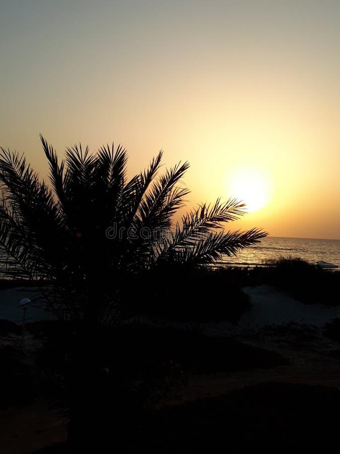 Sonnenaufgang am Strand stockfoto