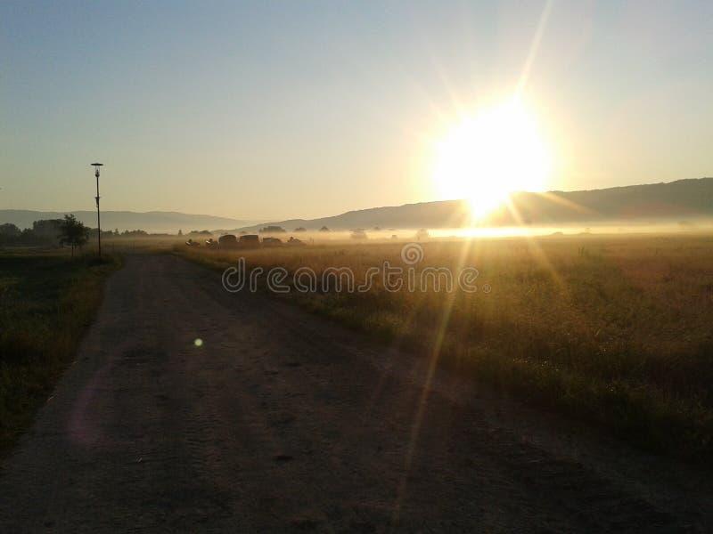 Sonnenaufgang vom Nebel stockfotografie