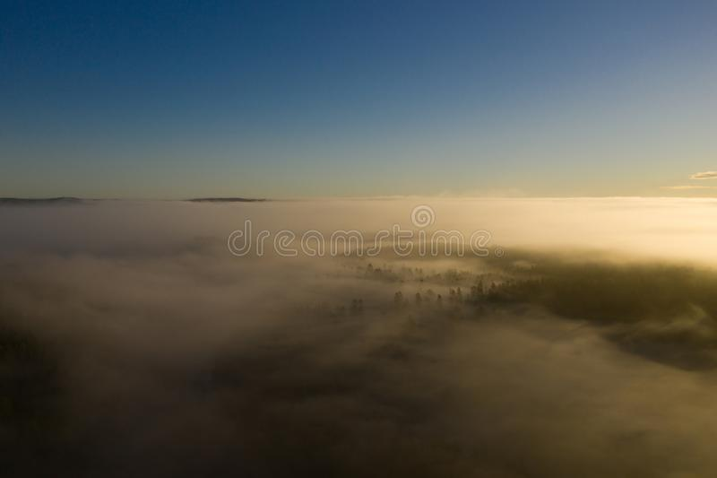 Sonnenaufgang, Wald und Frostnebel lizenzfreies stockbild