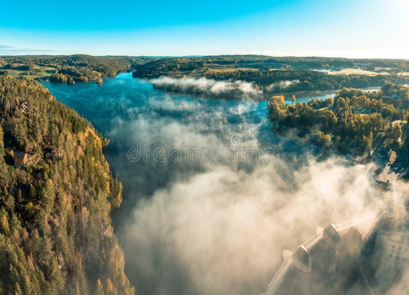 Sonnenaufgang, Wald und Frostnebel stockfotografie
