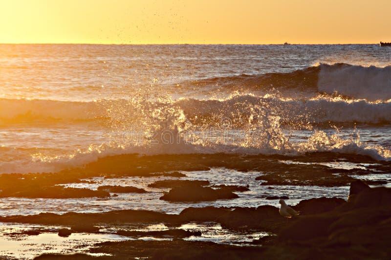 Sonnenaufgang-Wellen 2 lizenzfreie stockfotos