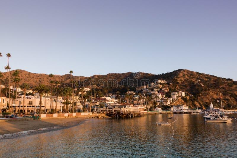 Sonnenaufgangmeerblick des frühen Morgens in Avalon Harbor, der in Richtung des Strandes und der Kleinstadt blickt stockbild