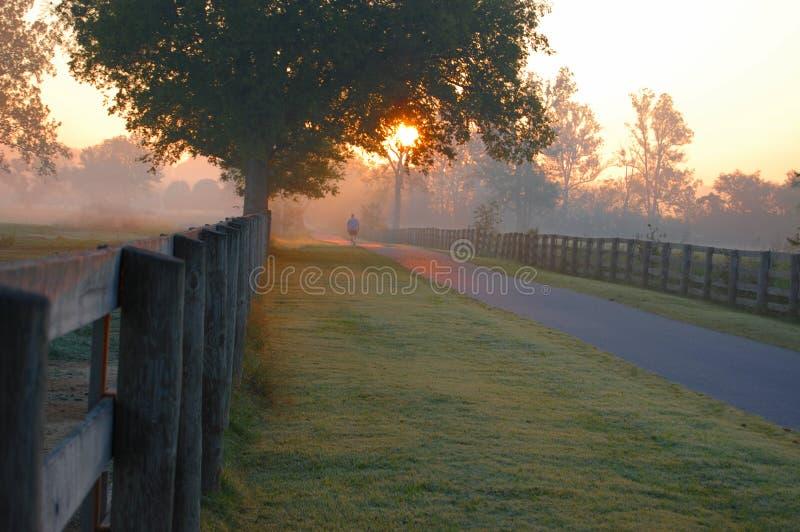 Sonnenaufgangweg stockbilder
