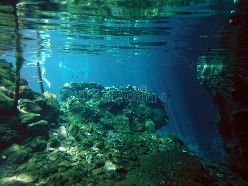 Sonnenbeschiene Unterwasserlandschaft von YucatÃ-¡ n Gran Cenote stockfotografie