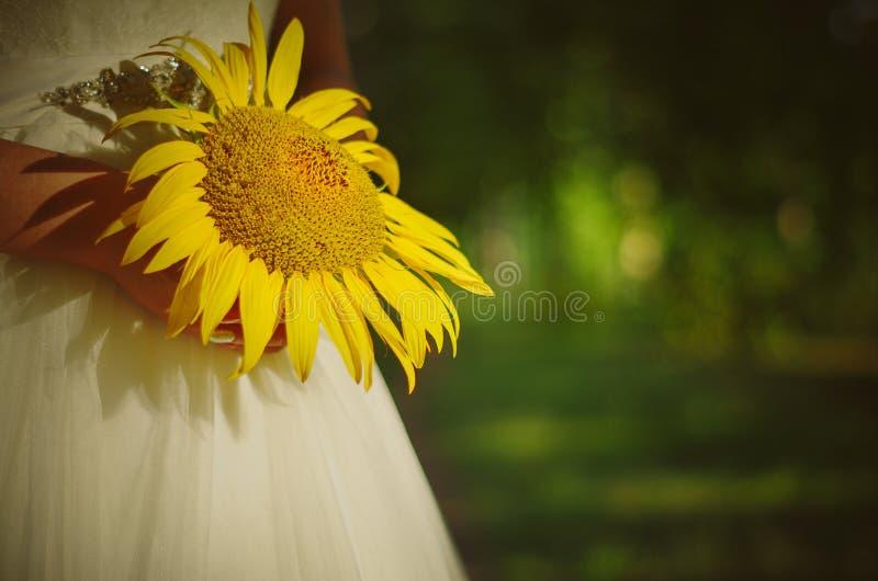 Sonnenblume in den Händen der Braut lizenzfreie stockfotos