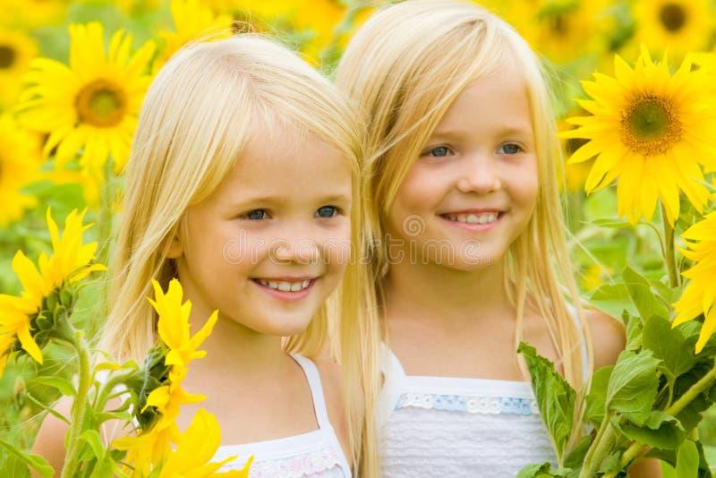 Sonnenblumeglück stockbild