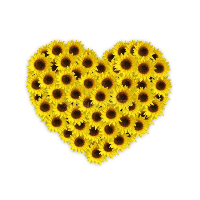Sonnenblumeinneres vektor abbildung