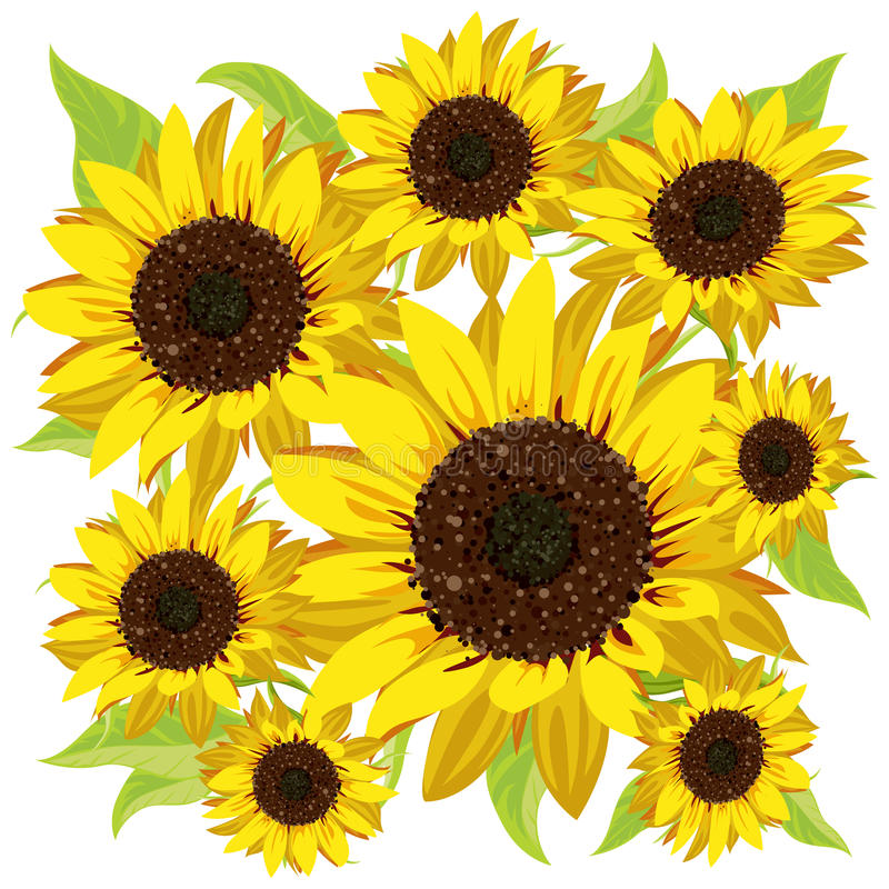 Sonnenblumemuster stock abbildung